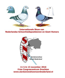 Internationale show NSP&Giant