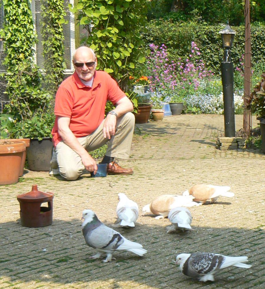 Klaas Nicolaij met duiven